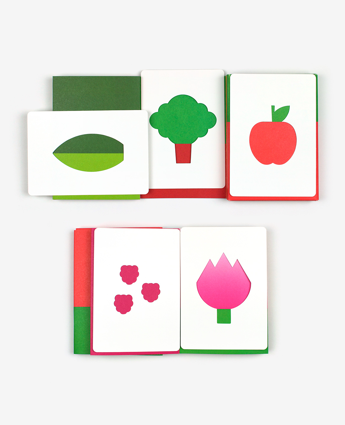 Leaf, tree, apple, raspberry and tulip from the book-game Hello tomato