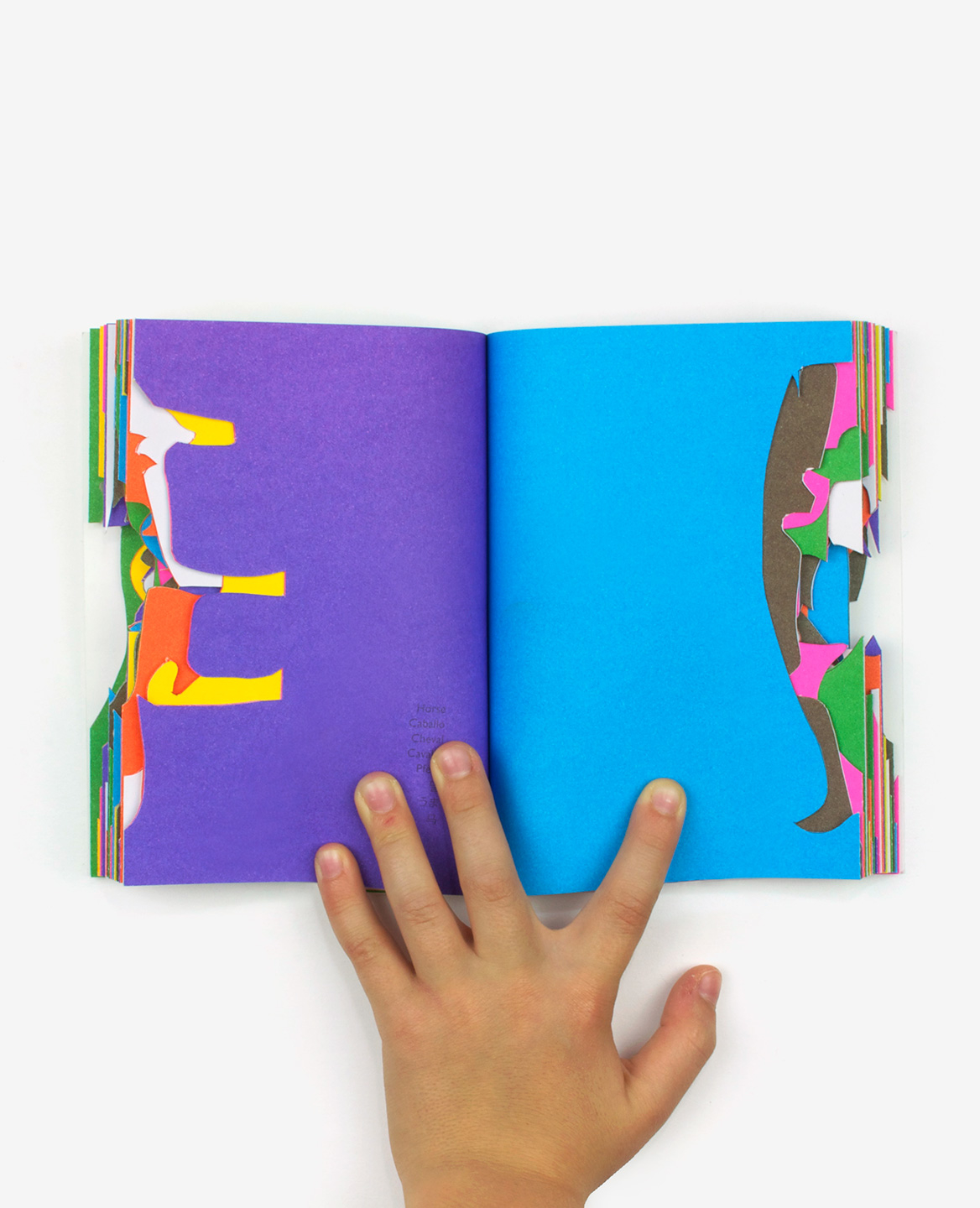 Colorful silhouettes of animals cut out from the book Zoo in my hand by Inkyeong & Sunkyung Kim published by Éditions du livre