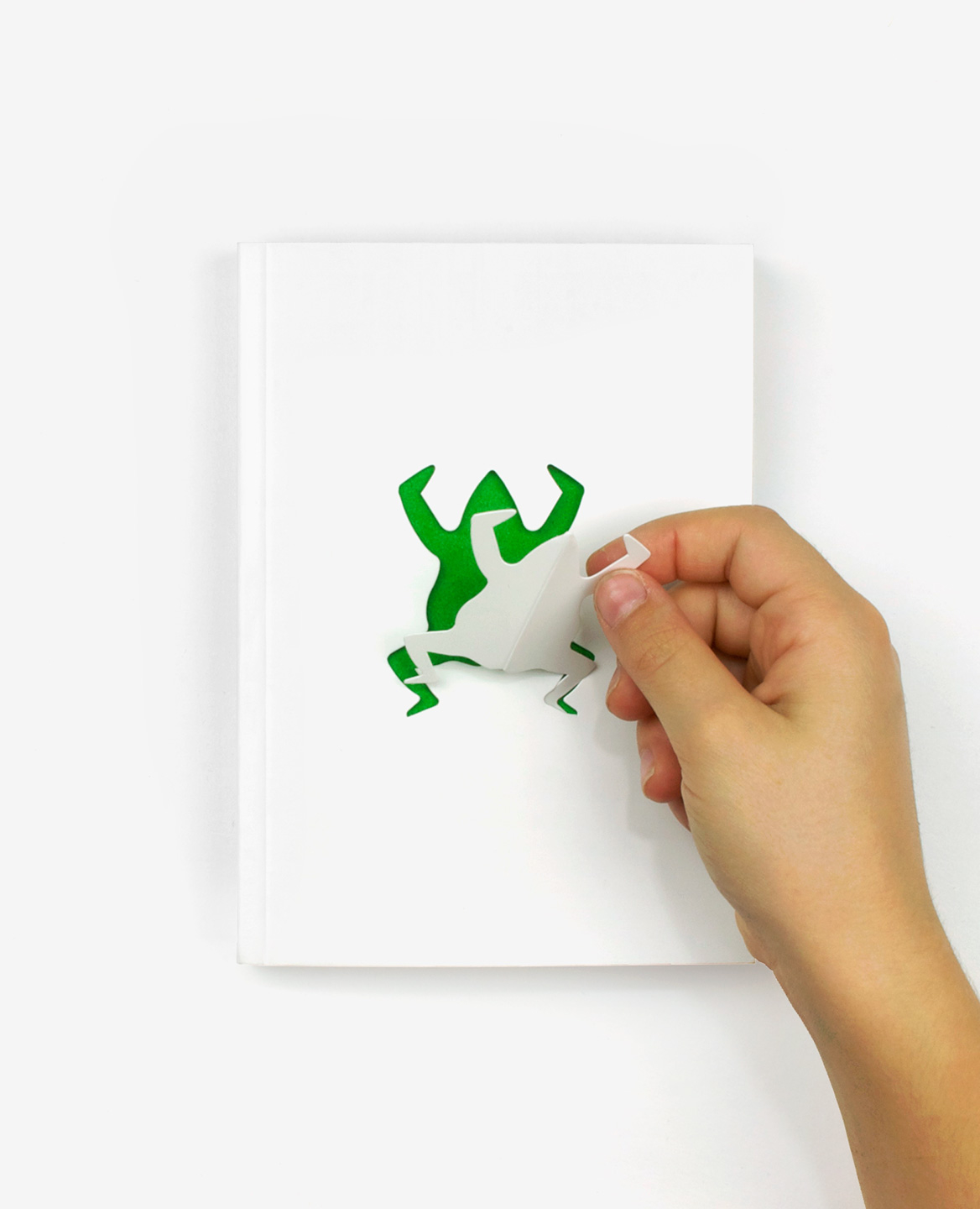 A child's hand stinging a paper frog from the cover of the book Zoo in my hand by Inkyeong & Sunkyung Kim published by Éditions du livre