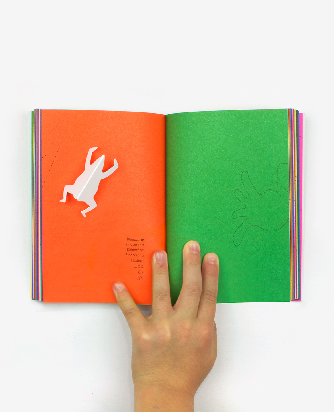 Orange and green double-page of the book Zoo in my hand by Inkyeong & Sunkyung Kim published by Éditions du livre