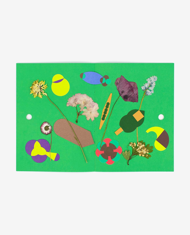 Double-page du livre Herbier comportant une composition mêlant formes graphiques et fleurs séchées
